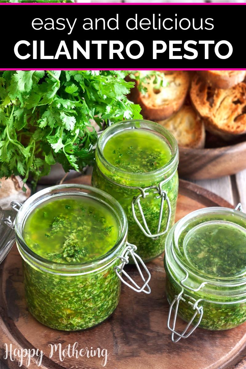 Jars of homemade cilantro pesto