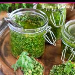 Cilantro pesto in jars and on toasted bread