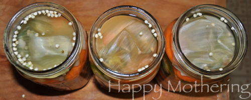 Onion skins covering spicy carrot ingredients in mason jars