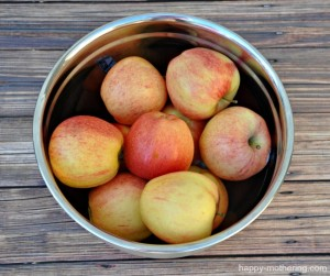 Gala apples in a bowl