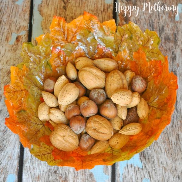 Overhead view of fall leaves bowl with nuts in it