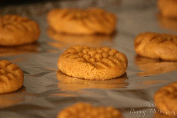 Peanut butter cookies pressed onto a cookie sheet