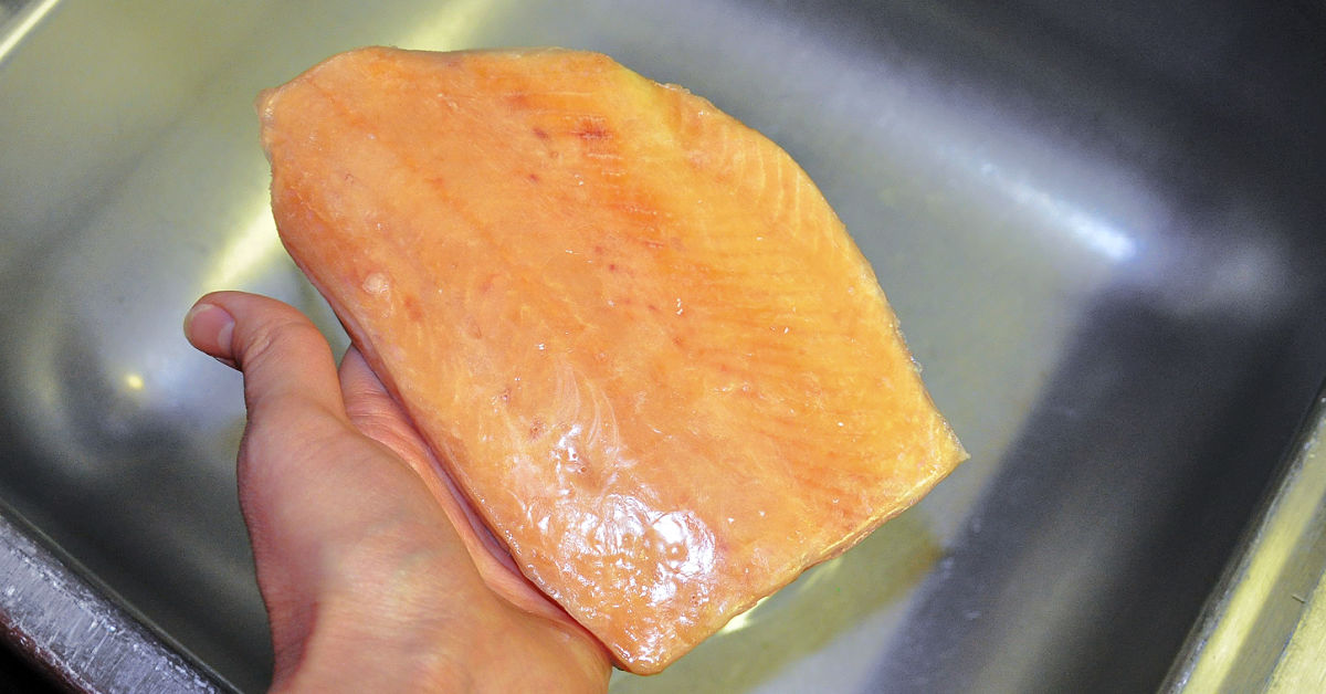 Frozen salmon filet being rinsed under the water to remove protective ice glaze.