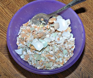 Egg shells being crushed in purple bowl