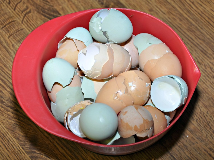 A bunch of egg shells in a red mixing bowl