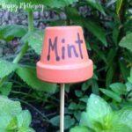 Square image of Mint flower pot garden marker