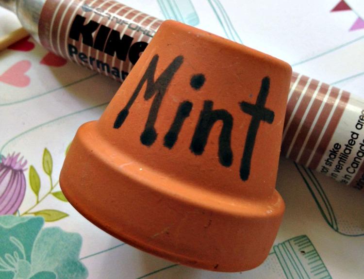 Mint written on small terracotta pot