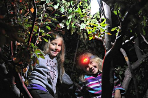 Zoe and Kaylee in a tree at the park at night with a head lamp on