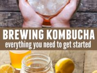 Brewing kombucha at home is so much easier than it might sound. Click to read about the 8 things you need to get started brewing kombucha at home.