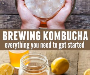 Brewing Kombucha: 8 Things You Need to Get Started