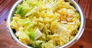 Chopped Napa cabbage in large metal mixing bowl.