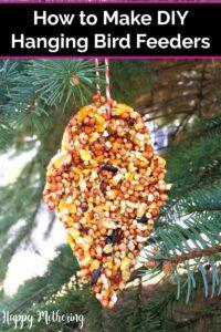 Peanut butter free birdseed bird feeder hanging in an evergreen tree