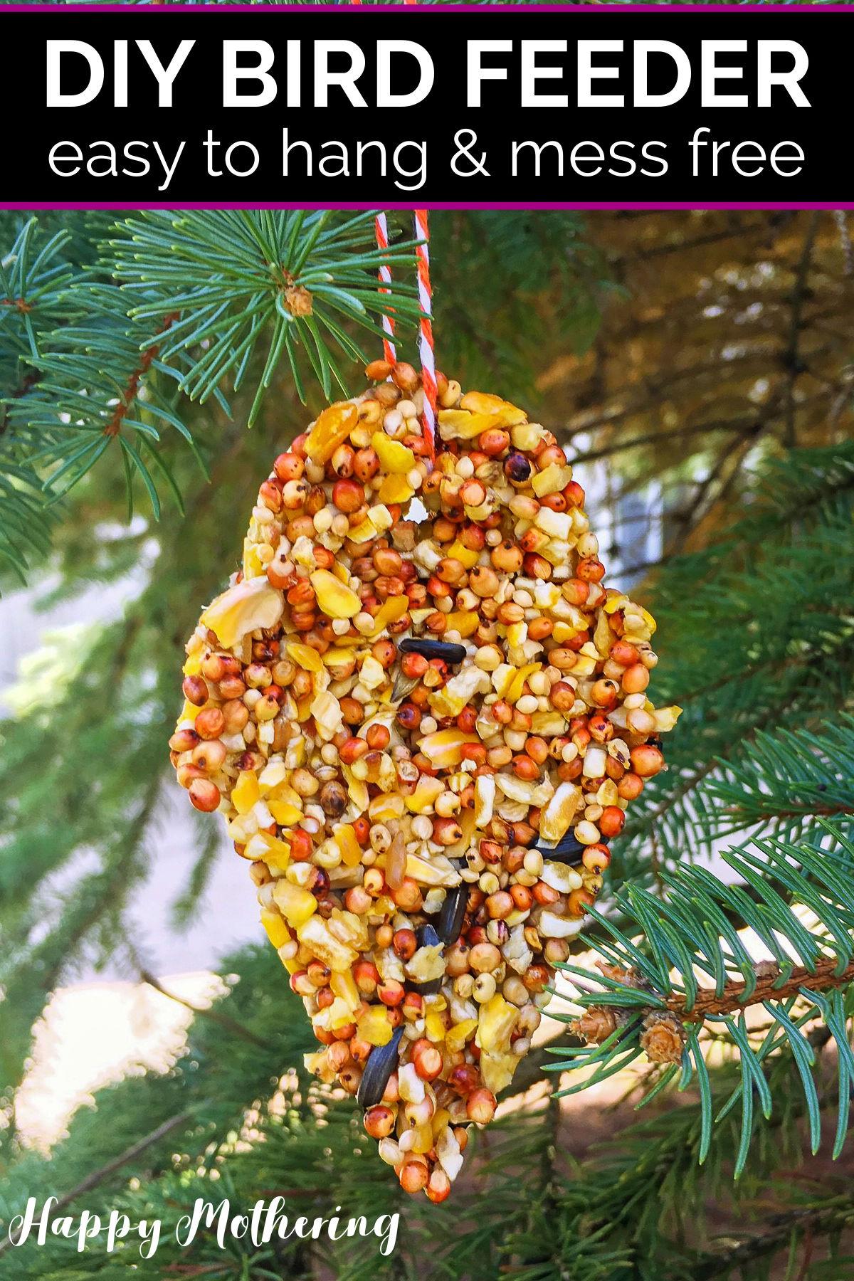 DIY birdseed bird feeder hanging from a pine tree
