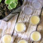 DIY headache balm on a table open next to a plant in a pot.