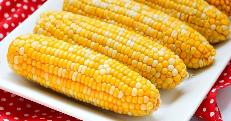 Yellow and white corn on the cob cooked in the Instant Pot on a white serving platter
