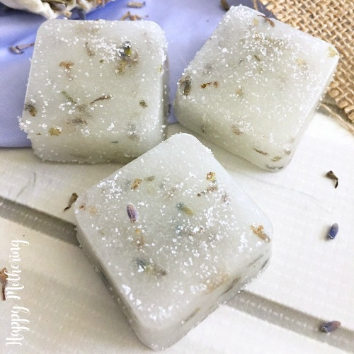 Close up of homemade lavender sugar scrub cubes with dried lavender petals