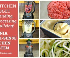 One Kitchen Gadget for Blending, Food Processing & Spiralizing!