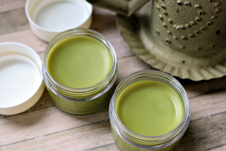 Matcha Green Tea Salve cooled and ready to be used.