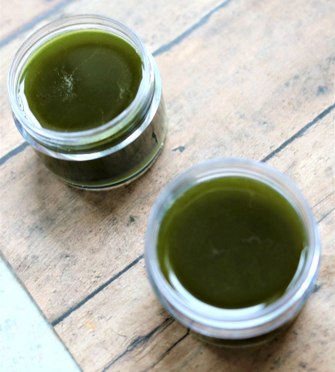 Matcha green tea salve poured into containers to cool.