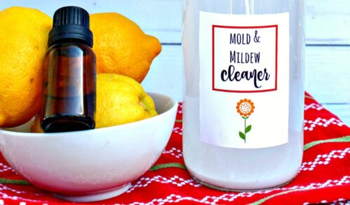 Close up of bottle of homemade mold and mildew cleaners setting on a table next to a bowl of lemons and one bottle of essential oil with no label