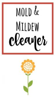 Image of mold and mildew cleaner label with a yellow flower on it