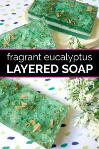 Three eucalyptus scented layered soap bars