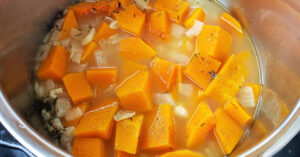 Butternut squash cubes and chicken stock added to Instant Pot with onion, garlic and spices.