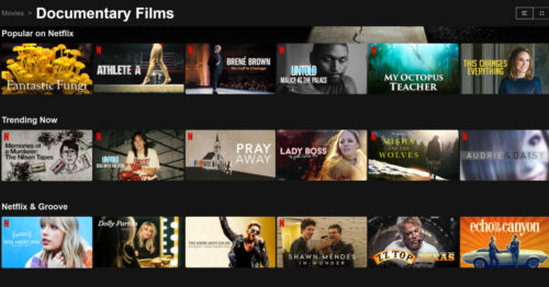 Screenshot of titles of documentaries currently on Netflix.